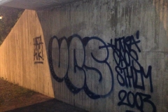 ucsthrowup